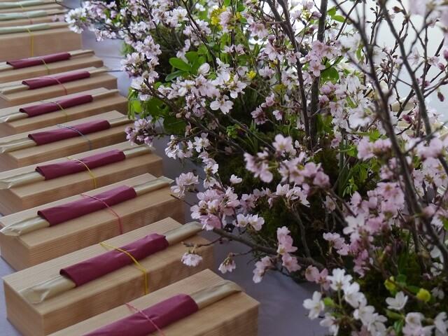 ルミエールアキ、桜、お花見ボックス
